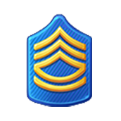 Badge Military Level 11