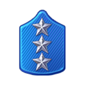 Badge Military Level 78