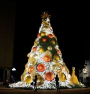 RealWorld Santo Domingo Christmas Tree