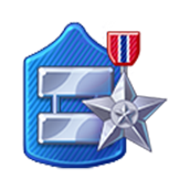 Badge Military Level 53