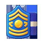 Badge Military Level 25