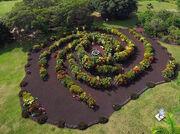 RealWorld Galaxy Garden