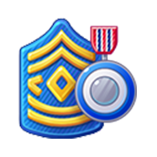Badge Military Level 17