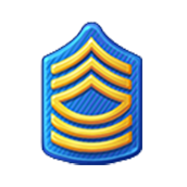 Badge Military Level 13