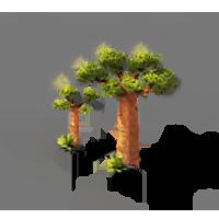 File:Baobab.png