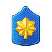 Badge Military Level 55