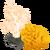 Asset Corals (Pre 06.19.2015)