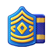 Badge Military Level 16