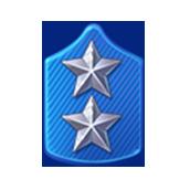 Badge Military Level 73
