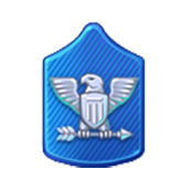 Badge Military Level 63