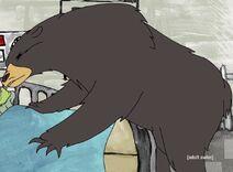 Appalachian Black Bear