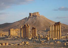 Palmyra--tadmur---syria 771