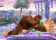 Donkey Kong SS