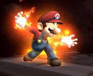 Mario DOJO 5