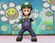Luigi DOJO 1