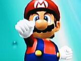 List of SSBM trophies (Super Mario Bros. series)