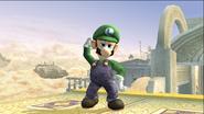 Luigi Idle Pose 1 Brawl