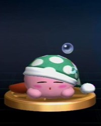 Sleep Kirby Trophy