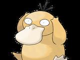 Psyduck (Pokemon)