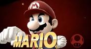 Mario-Victory-SSB4