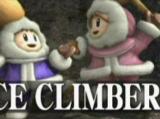 Ice Climbers (Super Smash Bros. Brawl)