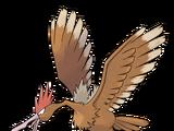 Fearow (Pokemon)