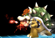 Bowser weak fire