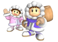 Ice Climbers - Super Smash Bros. Melee