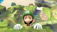 Luigi8