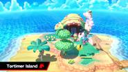 SSBU Tortimer Island