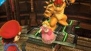 SSB4 - Peach Screen-4