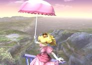Parasol SSBB