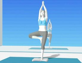 Wii Fit Trainer Original