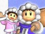 Ice Climbers (Super Smash Bros. Melee)