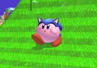 Sonic-Kirby 1 SSBB