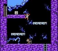 Mega Man y Rush en Mega Man 3