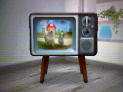 Televisor retro en Nintendogs + Cats