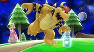Botella con Hada SSB4 (Wii U)