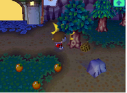 Panal de abejas en Animal Crossing Wild World