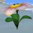 Flor en SSBM