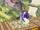 Ataque del espectro (5) SSB4 (Wii U).png