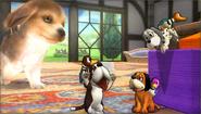 Créditos Modo Leyendas de la lucha Dúo Duck Hunt SSB4 (3DS)