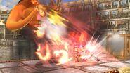 Hoja llameante (4) SSB4 (Wii U)