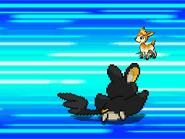 Agilidad Pokemon Blanco y Negro
