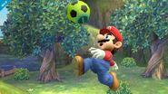 Balón de Fútbol de la Entrenadora de Wii Fit SSB4 (Wii U)