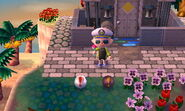 Trampa disimulada junto a una trampa normal en Animal Crossing New Leaf