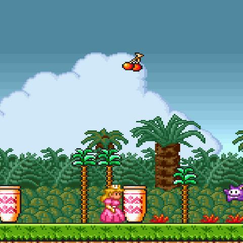 Segundo nivel de <i>Super Mario Bros. 2</i>.