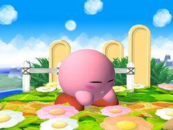 Pose de espera Kirby SSBB (1)