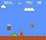 Flor de Fuego Super Mario Bros.
