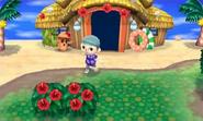 Isla Tórtimer en Animal Crossing New Leaf